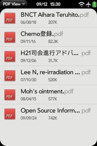 PDF Viewを開いたところ。