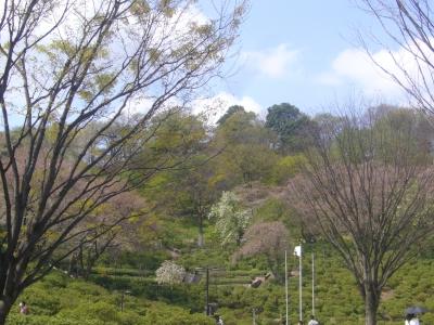 入団式2012-4