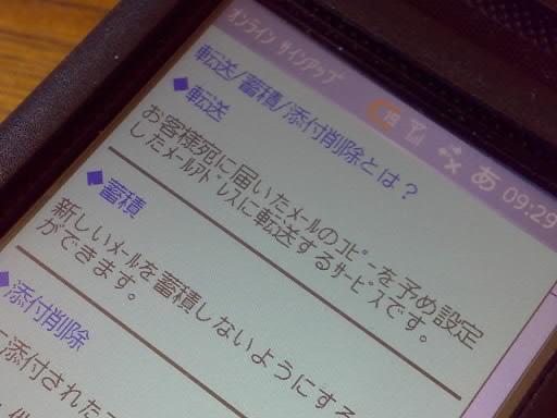 20080325.jpg