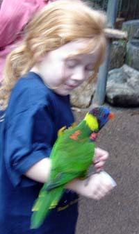kira&bird