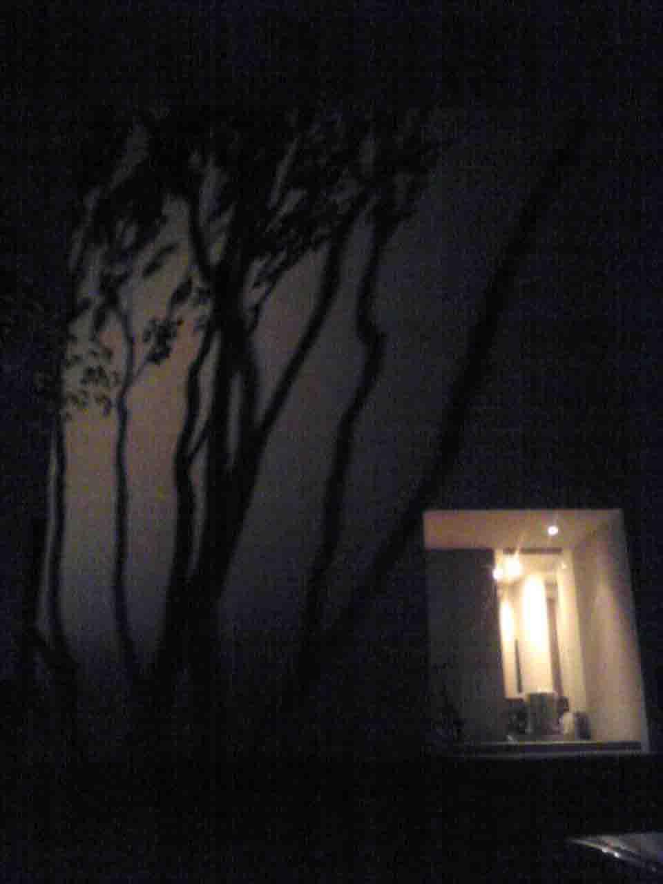 井川邸夜.jpg