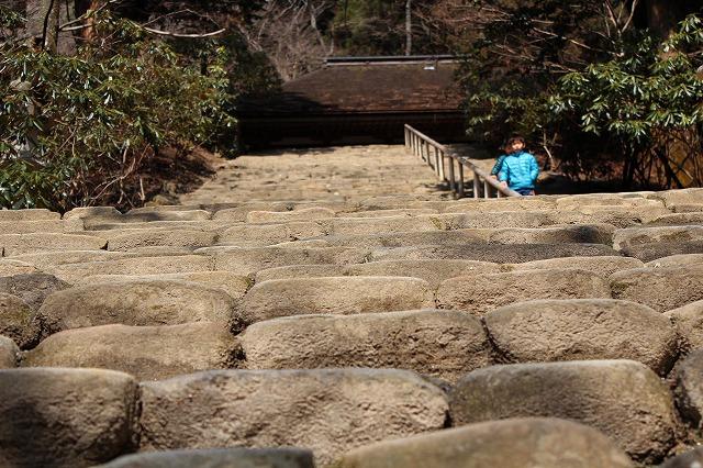 s-IMG_1607 奥ノ院まで720段の階段.jpg