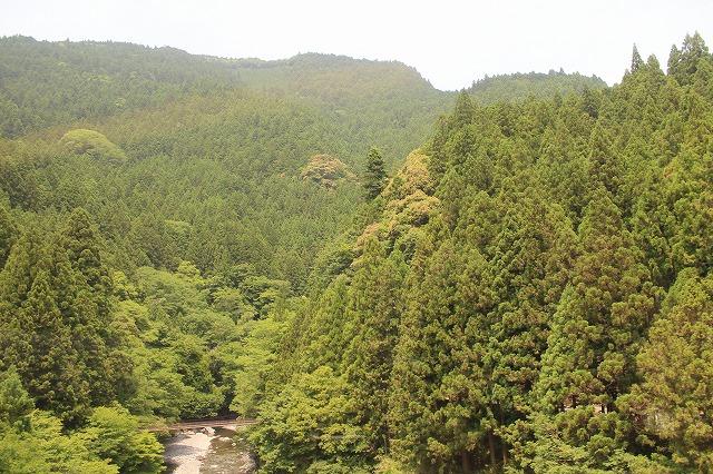 s-IMG_0153 ほんとに山ん中なかって風景です 11.16a.jpg