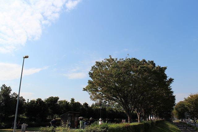 s-IMG_2102☆.jpg