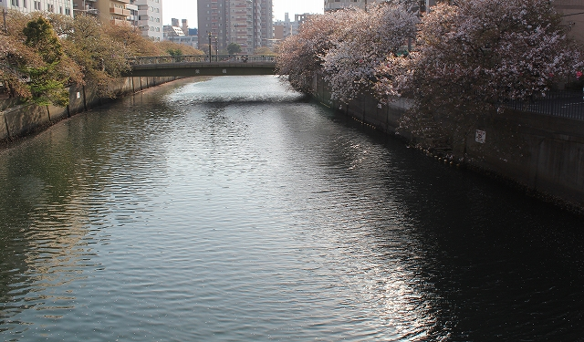 ☆aIMG_8186☆z01.jpg