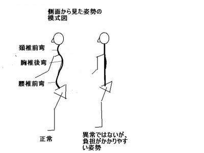 脊椎のバランス