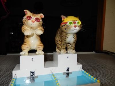 水泳猫スタート.JPG