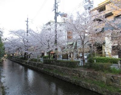 高瀬川.JPG6.JPG