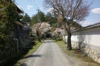 小野神社参道 (002).jpg