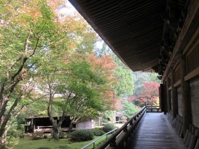 本堂からの庭園.JPG3.JPG