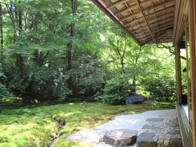 瑠璃の庭.JPG3.JPG