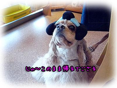 2010-09-09-081m.jpg
