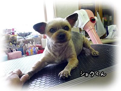 2010-09-15-001n.jpg