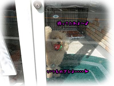 2010-09-17-014i.jpg
