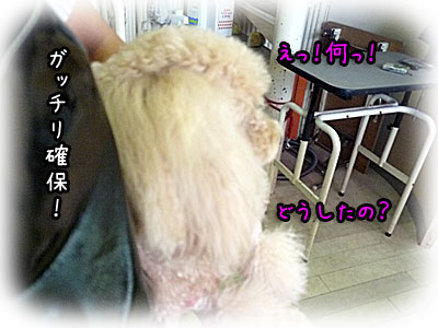 2010-09-17-020j.jpg