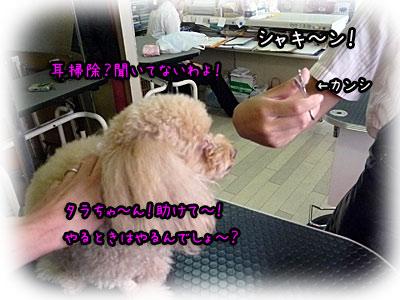 2010-09-17-021k.jpg