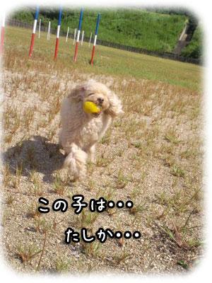 b0920f.jpg