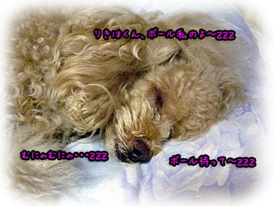 2010-09-22-001q.jpg
