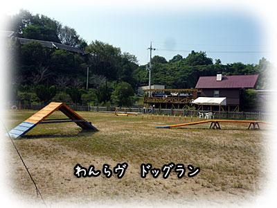2010-09-22-007g.jpg