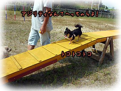 2010-09-22-011i.jpg