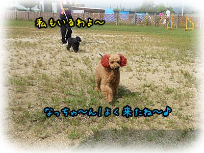 2010-09-22-016j.jpg