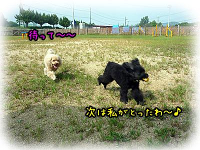 2010-09-22-024l.jpg