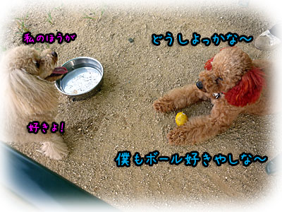 2010-09-22-035o.jpg