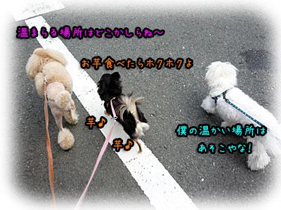 2010-09-25-002g.jpg