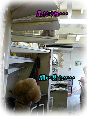 2010-08-21-025a.jpg