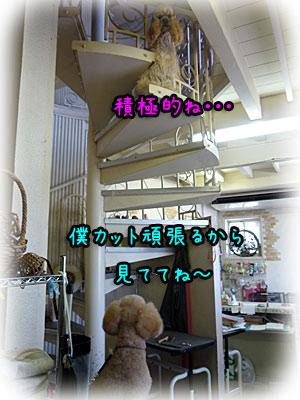 2010-08-21-029b.jpg