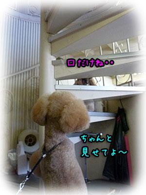 2010-08-21-033c.jpg