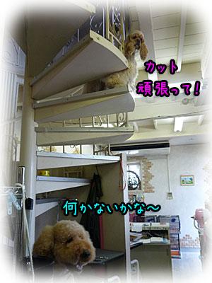 2010-08-21-036d.jpg