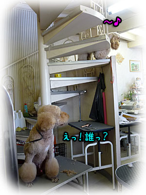 2010-08-21-043f.jpg