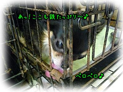 2010-10-06-014k.jpg
