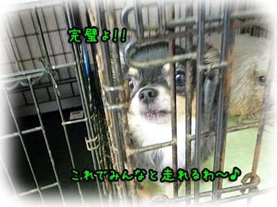 2010-10-06-018m.jpg