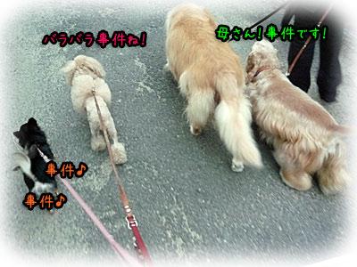 2010-10-14-025o.jpg