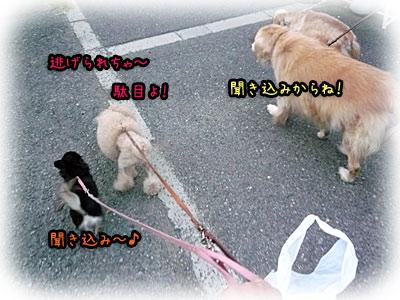 2010-10-16-002t.jpg