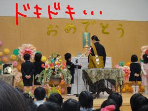 献香献花♪