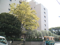 東急アパートメント