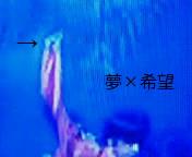 201008192238000.jpg