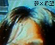 201010282144000.jpg