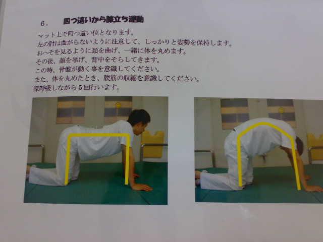 �四つ這いから膝立ち運動〜深呼吸しながら5回