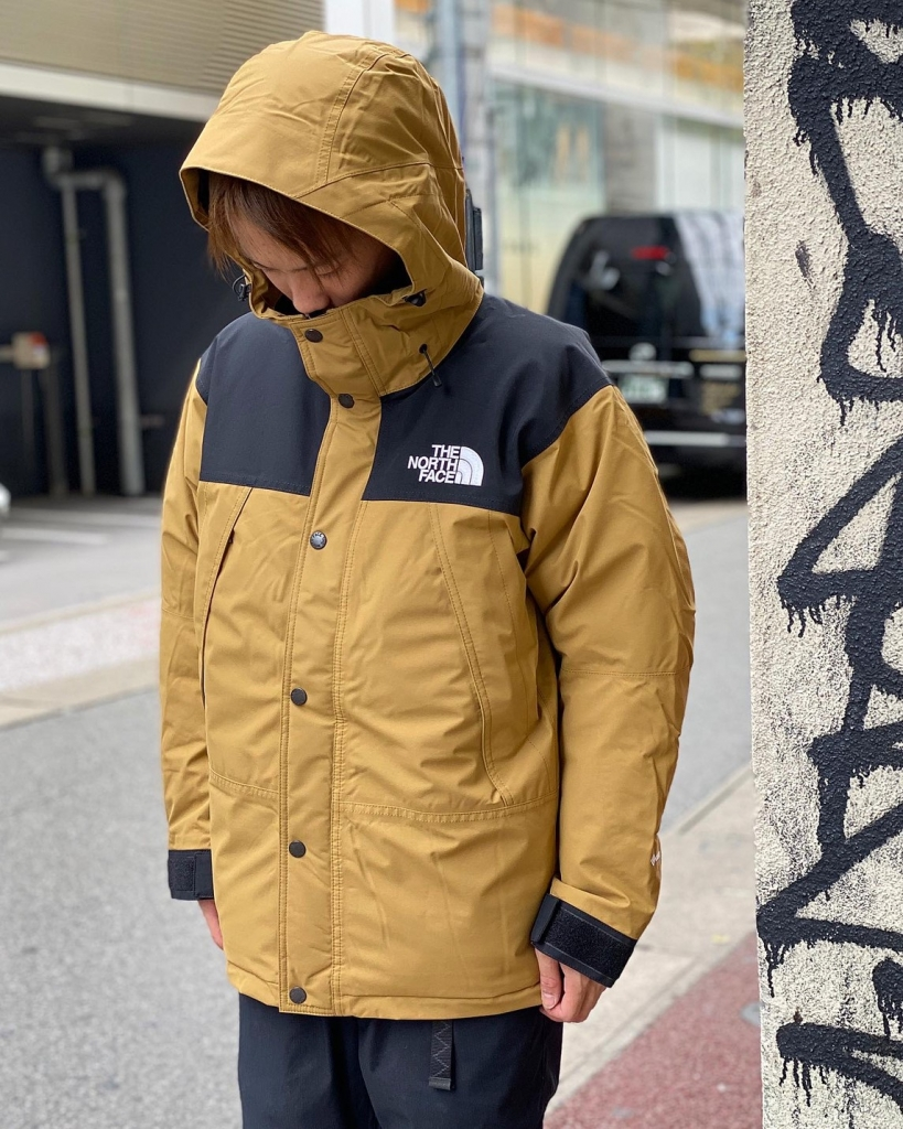 THE NORTH FACE MOUNTAIN DOWN JACKET ND91930-BK