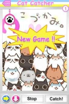 NoName_0006.jpg