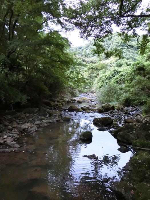 夏の川 山の小川 8月の田舎の川