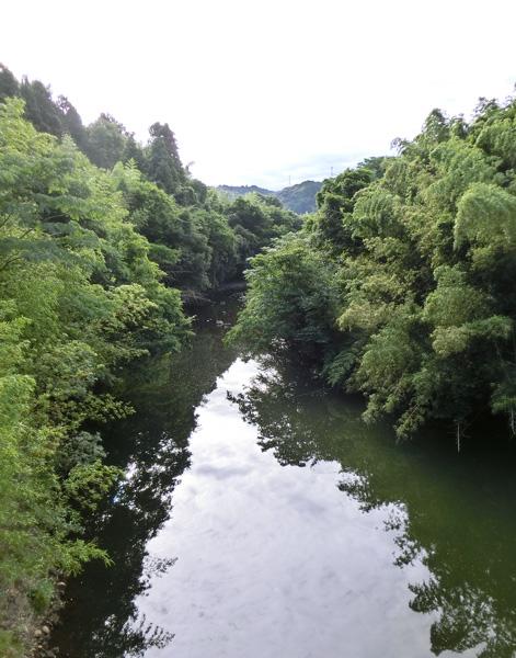 田舎の川 山間の河 淵 8月 朝日