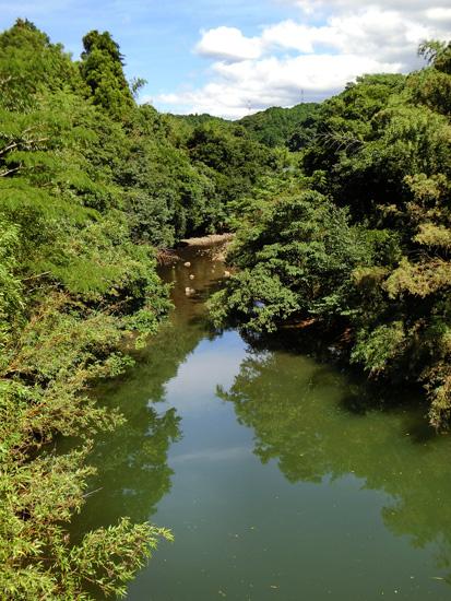 田舎の川 山間の河 淵 8月 夏快晴