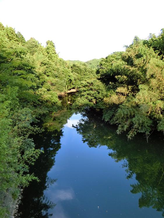 田舎の川 山間の河 淵 8月 夕日