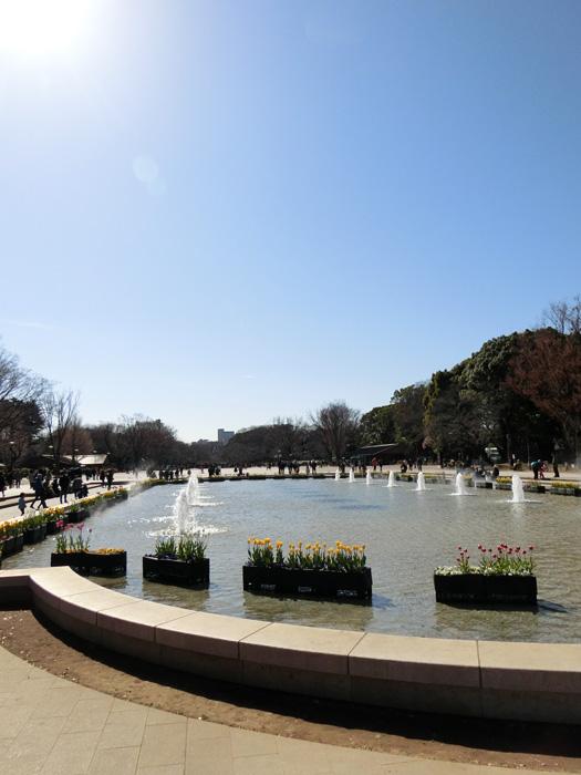 上野恩賜公園大噴水のアイスチューリップ 晴天の上野公園噴水広場