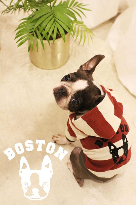 boda_boston2.jpg